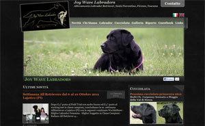 Joy Wave Labradors
